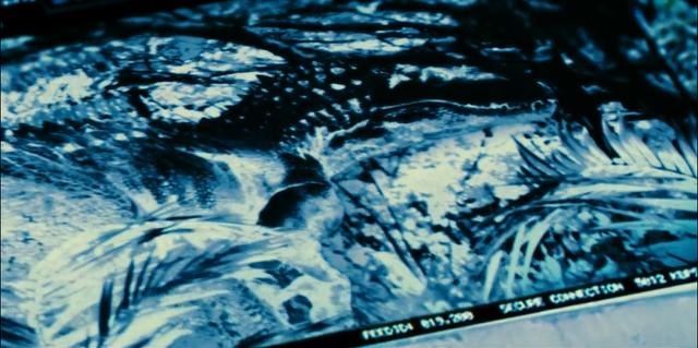 File:Indominus Rex (27).png