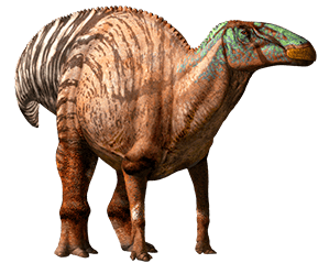 File:Edmontosaurus-info-graphic.png