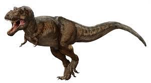 File:AMNH rex.jpg