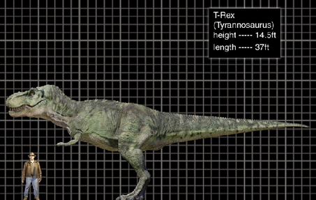 File:T-Rex size.png