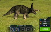 Triceratops 1S