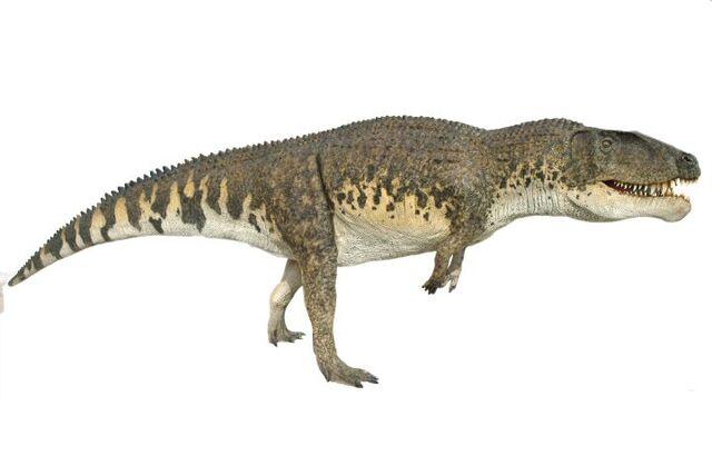 File:Postosuchus031.jpg
