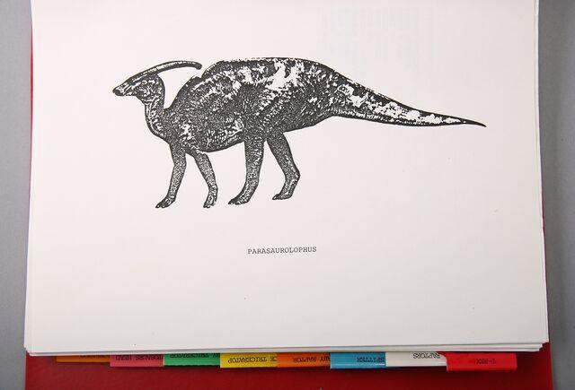 File:Tippettparasaur.jpg