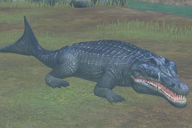 File:Metriorhynchus (36).jpg