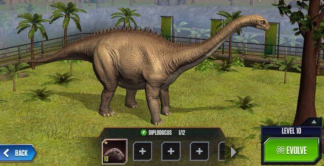 File:Diplodocus Base.jpg