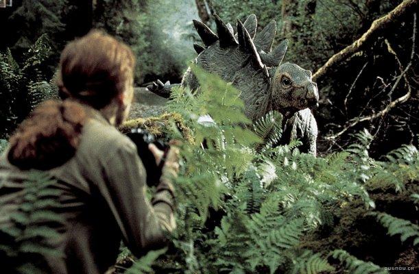 File:Stegosaur Baby 3.jpg