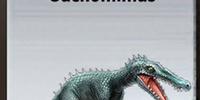 Suchomimus/Builder