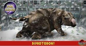 Diprotodon.jpg