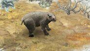 Diprotodon 9
