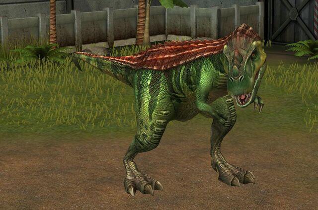 File:Gorgosaurus Libratus (15).jpg
