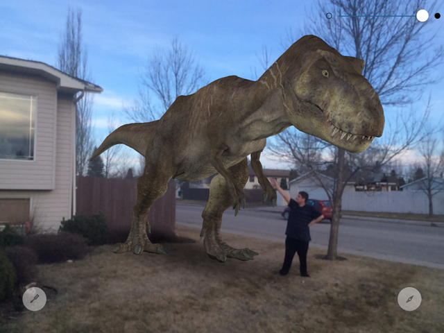 File:Rexy in my front yard at sunset.png