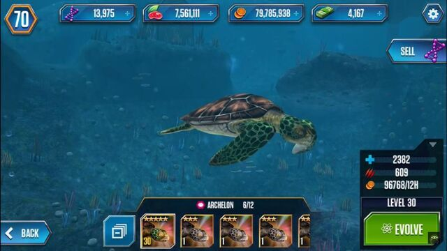 File:Lvl30turtle.jpg