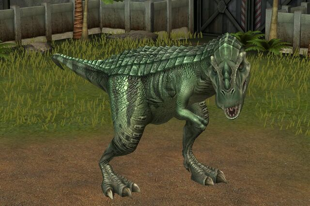 File:Gorgosaurus Libratus (14).jpg