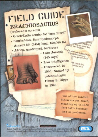File:2001 Jurassic Park III 3-D 61 Brachiosaurus back.jpg