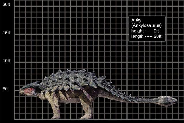 File:800x537 Ankylosaurus.jpg