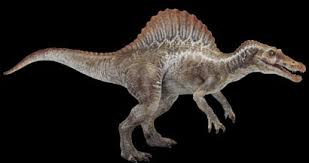 File:Spinosaur.jpeg