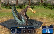Tropeognathus 1S