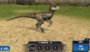 Velociraptor Base