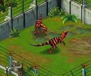 Velociraptor third evolution adults