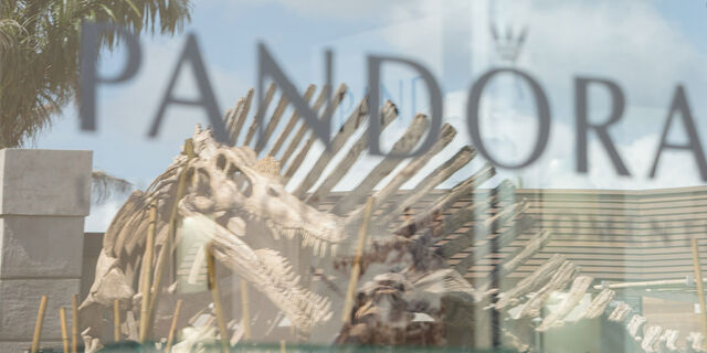 File:Pandora-window.jpg