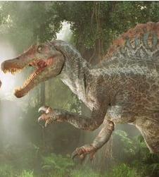 File:Spinosaurus3.jpg