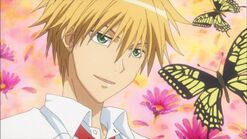 Usui with butterflies