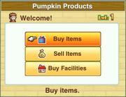 Pumpkin products-dungeon village
