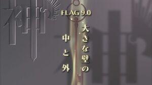 Flag 9.0