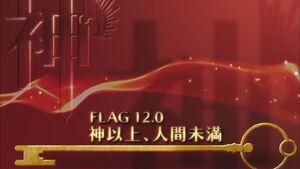Flag 12.0