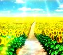 The Miracle of Light (OVA EDIT)