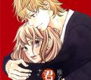 Kimi ni Todoke Manga Volume 16