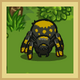 MiniBox Junglespider