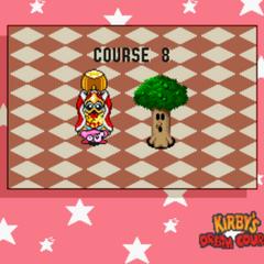 Course 8