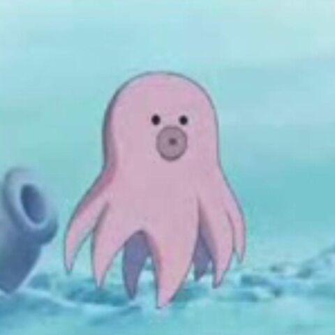 Octacon en su forma pequeña.