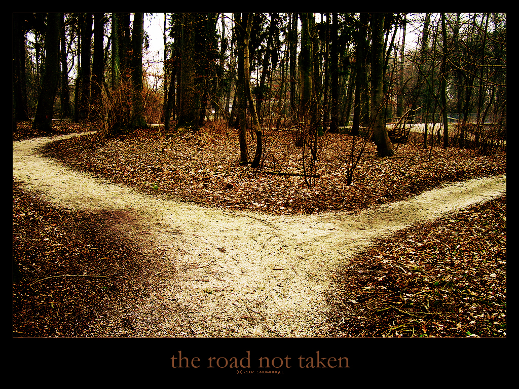 the road not taken images the road not taken