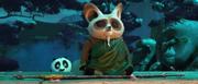 Shifu-meditates