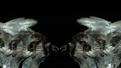 SHOWstudio-Raven-01