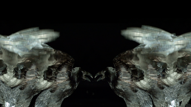 File:SHOWstudio-Raven-01.png