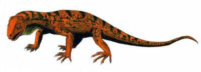 Trilophosaurus