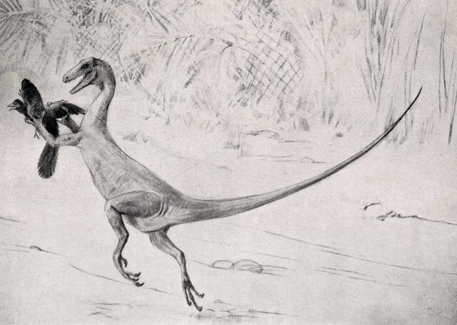 File:Ornitholestes by Charles R. Knight.jpg
