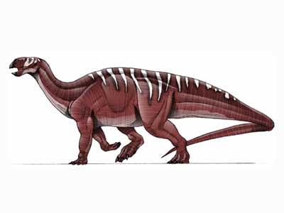 File:Tenontosaurus.jpg