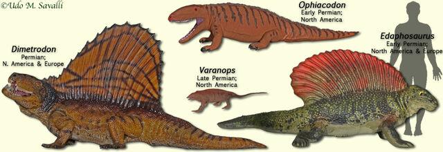 File:PelycosaurModels.jpg