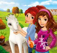 Olivia, mia and foal