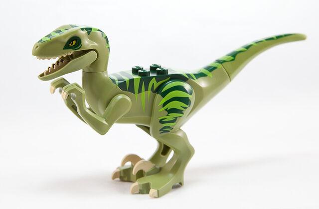 File:Raptor-2.jpg