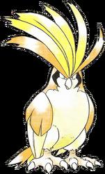 018 Pidgeot RG Shiny