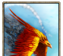 Newborn Phoenix