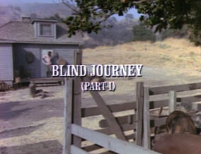 Title.blindjourney1