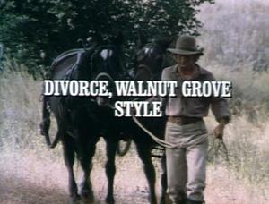Title.divorcewalnutgrovestyle