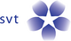 SVT logo 2002