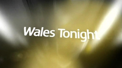 Wales Tonight 2010